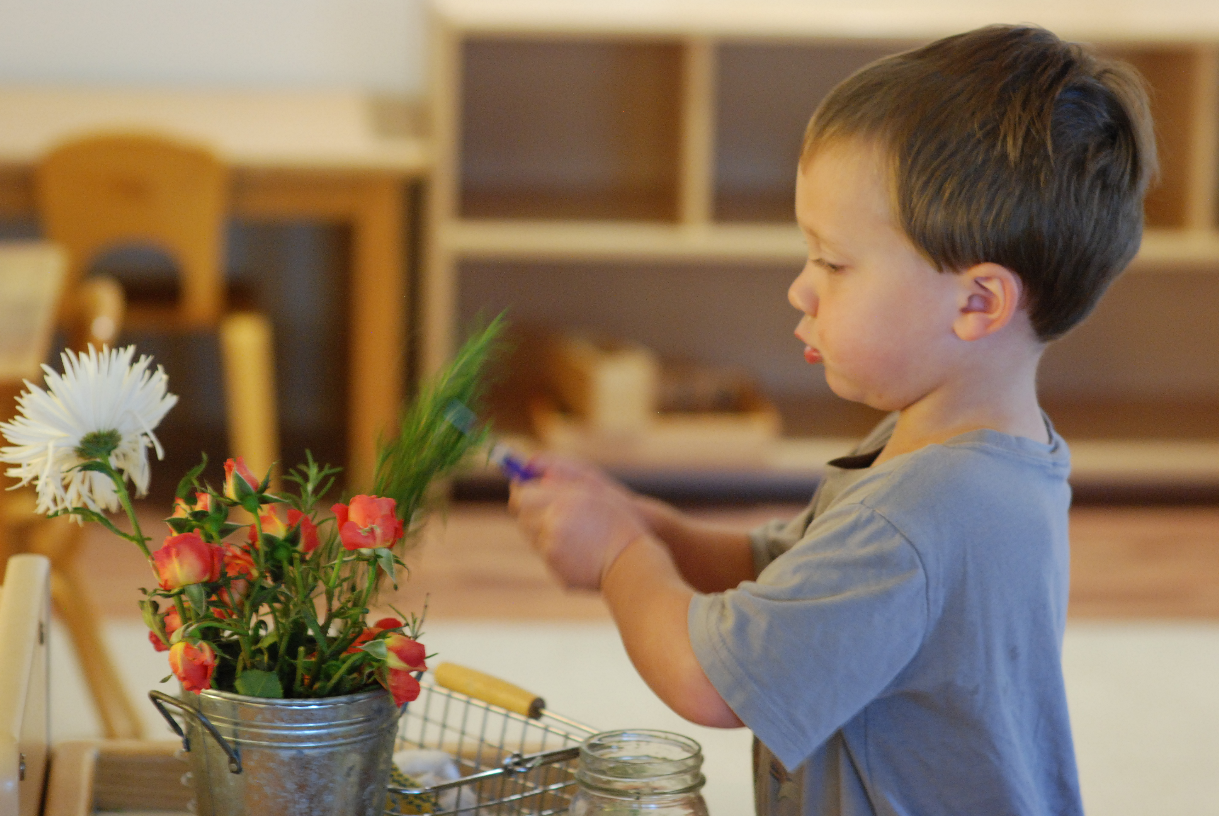 A Pre-K Montessori student tending to flowers in his classroom