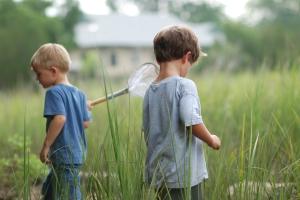 Marsh Ecology